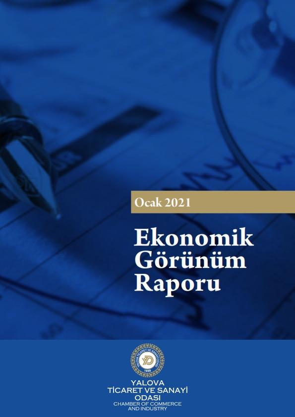 Ekonomik Görünüm Raporu 2021/01