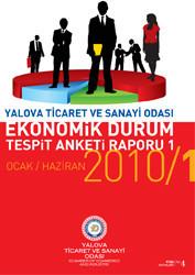 Ekonomik Durum Tespit Anketi Raporu 2010/1