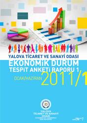 Ekonomik Durum Tespit  Anketi Raporu 2011/1